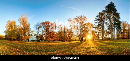 Panorama der Herbst Baum in Forest Park bei Sonnenuntergang - Stockfoto