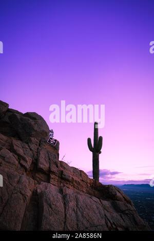 Wunderschöne Landschaft Silhouette von Lone Kaktus gegen purple sky