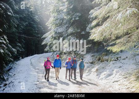 Familie Wandern auf Trail im sonnigen, verschneiten Wald - Stockfoto