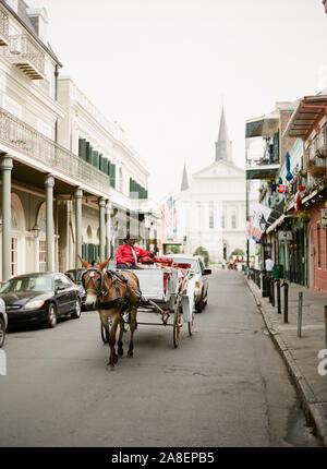 Ein afrikanischer Amerikaner Kutsche Fahrer Touristen durch die alten Straßen des French Quarter, New Orleans, Louisiana - Stockfoto