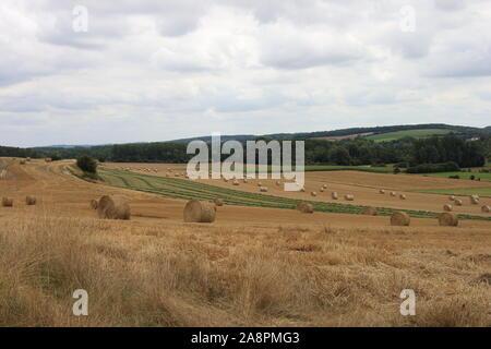 Strohballen auf einem Feld im Sommer. Hauts-de-France. - Stockfoto