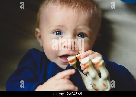 Baby Kaut