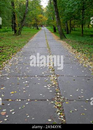 Lange Park Alley mit konkreten Bausteinen im frühen Herbst fallen in Mitte Oktober, Städte, Ukraine