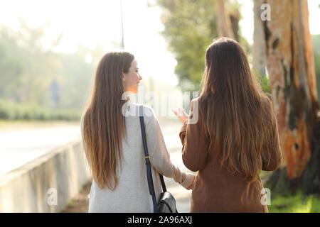 Rückansicht Porträt zweier Frauen und sprechen in einem Park asunny Tag - Stockfoto