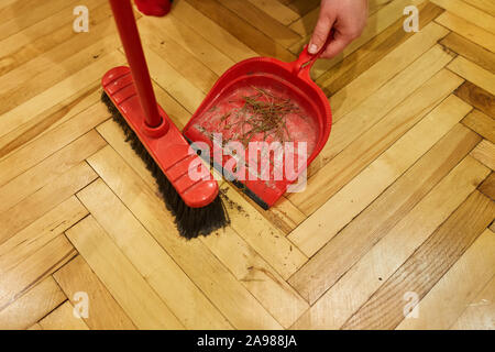 Die Reinigung nach der Feier von Weihnachten. Besen und Schaufel mit Nadeln vom Weihnachtsbaum - Stockfoto