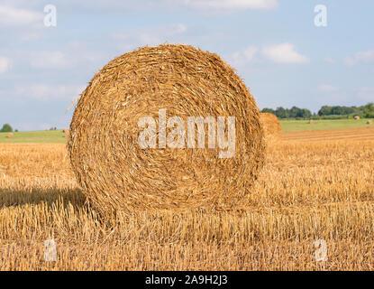 Strohballen auf einem abgeernteten Feld - Stockfoto