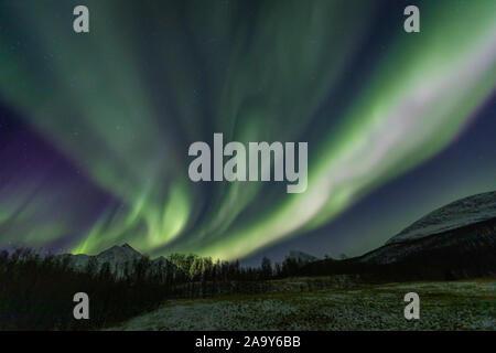 Nordlichter über Lakselvdalen und Lakselvbukt, Nord Norwegen - Stockfoto