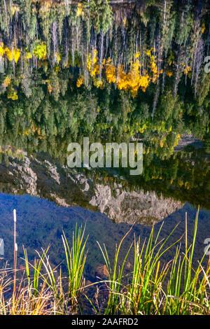 Kartoffel Hügel spiegelt sich auf Kartoffel (Spud) See und die Farben des Herbstes, San Juan, Berge, Colorado USA - Stockfoto