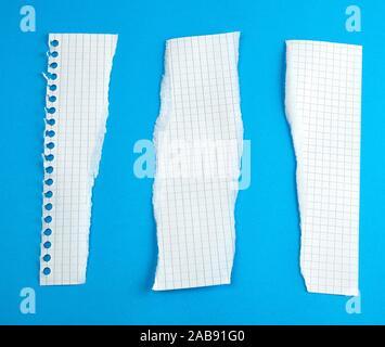 Abgerissene Papierstreifen von einer Schule Notebook in eine Zelle auf einem blauen Hintergrund, Gerissene Kanten. - Stockfoto