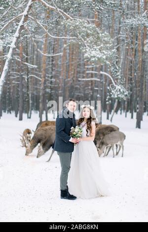 Liebende Paar, umarmen und küssen, im Winter schneebedeckten Wald. Herde von Hirsch auf dem Hintergrund. Winter Hochzeit. - Stockfoto