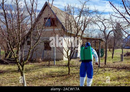 Landwirt in Schutzkleidung und Gasmasken Sprays von Obstbäumen im Obstgarten mit einer Feldspritze mit Chemikalien von pilzerkrankung oder v zu schützen. - Stockfoto