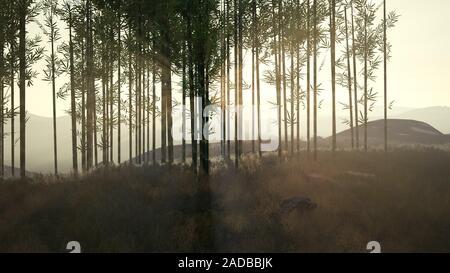 Grüner Bambus Wald im Hügel
