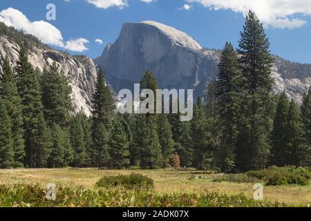 Half Dome von der Talsohle gesehen, Yosemite National Park, Kalifornien, USA. - Stockfoto