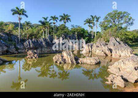 Vinales Pinar del Rio, Kuba, Nordamerika - Stockfoto