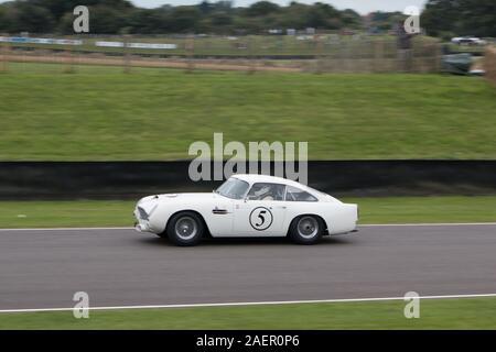 1960 Aston Martin DB4 GT mit Treiber Tiff Needell. RAC TT Feier rennen Goodwood Motor Racing Chichester West Sussex