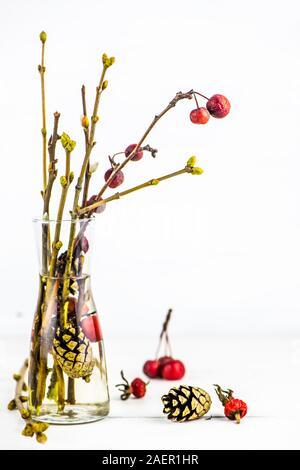 Herbst Winter Bouquet. hausgemachte Reed Diffuser. self-care Routine. Kopieren Sie Platz - Stockfoto