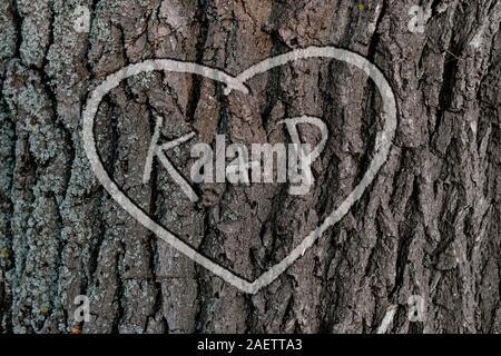 Die Namen der Personen, die sich in der Form von Herzen auf dem Baum geschnitzt Liebe - Stockfoto