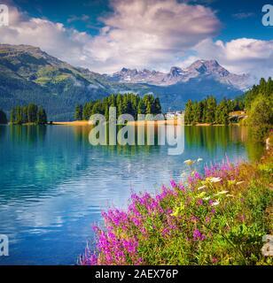 Sunne Sommer Szene auf der Champferersee See. Silvaplana Dorf im Morgennebel. Alpen, Schweiz, Europa. - Stockfoto
