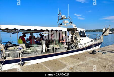 Fischer reinigen und ausbessern Netze auf Fischerboot aus der historischen Altstadt von Rovinj in Istrien, Kroatien an der Adria - Stockfoto