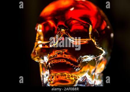 Glas Schädel mit Hintergrundbeleuchtung. Glas Schädel glühende mit goldenem Licht auf dunklem Hintergrund. - Stockfoto
