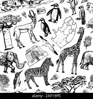 Afrika doodle Vintage nahtlose Muster Hintergrund. Wilde Tiere in Safari auf weißem Hintergrund. Giraffen und Zebras, Karte und Vögel. Hand gezeichnet - Stockfoto