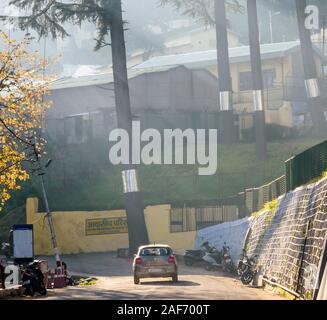 Lichtschächte trafen im Morgennebel auf die Bäume und die Gebäude der Almora-Kantonalbe. Ein Maruti Suzuki fährt die Straße hinunter. - Stockfoto