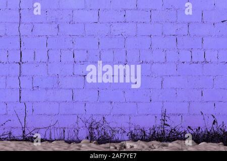 Violett Putz rauhen Wand Textur unter direkter Sonneneinstrahlung mit Schnee und trockenen gasss unter