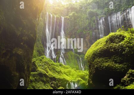 Atemberaubende Aussicht auf die Tumpak Sewu Wasserfälle auch bekannt als Amir Chupan Sewu bei Sonnenaufgang. Tumpak Sewu Wasserfälle sind eine touristische Attraktion in Indonesien. - Stockfoto