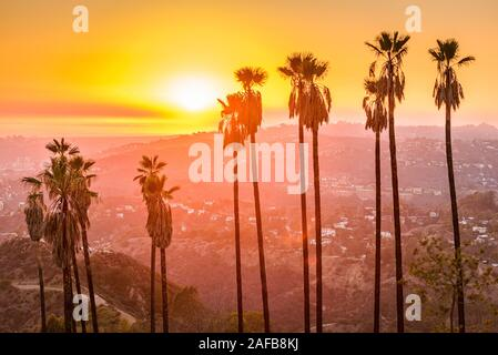 Griffith Park, Los Angeles, Kalifornien, USA bei Sonnenuntergang. - Stockfoto