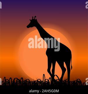 Giraffe auf dem Sunset Hintergrund. Schwarze Silhouette - Stockfoto