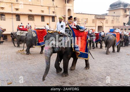 Dekoriert Elefanten bei Fort Amber in Jaipur, Indien - Stockfoto