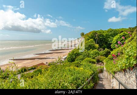 Beachy Head Nature Reserve in der Nähe von Eastbourne, East Sussex, Südengland - Stockfoto