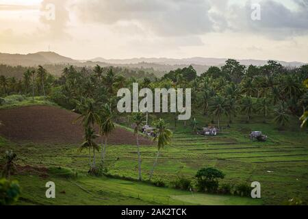 Schönen Sonnenuntergang über Kokospalmen und ländlichen Bauernhof auf der kleinen Insel auf den Philippinen - Stockfoto