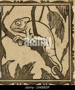 Blätter für Aquarien- und Terrarien-Kunde. // - Stockfoto