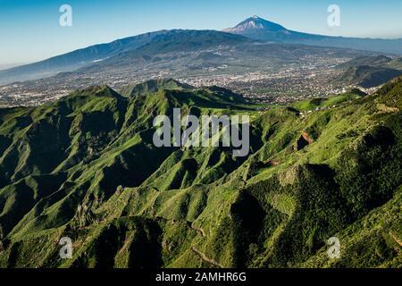 Grünen Hügeln von Anaga ländlichen Park mit dem emblematischen Berg Teide im Hintergrund vom Mirador de la Cruz del Carmen Aussichtspunkt. Teneriffa, Kanarische gesehen - Stockfoto