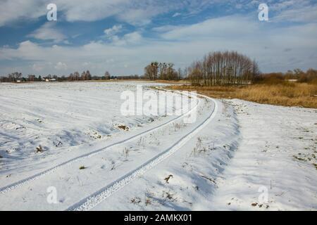 Spuren von Rädern auf verschneiten Schmutzwegen, Bäumen und Wolken am blauen Himmel - Stockfoto
