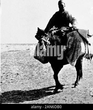 Chinesisch Turkestan mit Wohnwagen und Gewehr. Der AMBAN von Khotan. - Stockfoto