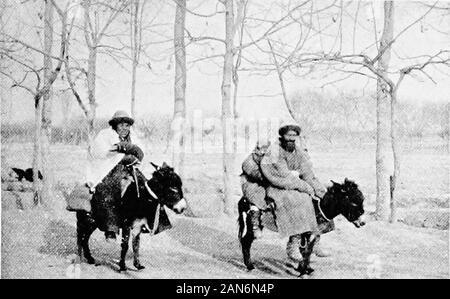 Chinesisch Turkestan mit Wohnwagen und Gewehr. NUL-lahs auf der nördlich des Passes, sondern in der Regel die mainvalley zu viel für Sie gestört, und wir sawnone, obwohl ich sie dort gesehen haben auf einem previousoccasion. Die Hügel halten auch Steinböcke. Aus diesem es isa stetigen Abstieg bis hin zu Kilyan, wo am 6. wearrived. Die Straße überquert die riverseveral Zeiten und wegen starkem Regen auf der 5 ththe letzten Furten nur so tief seien wie wir couldmanage; insbesondere war es mehr excitingthan angenehm Alle unsere weltliche Güter in Mid-Stream, aber mit viel Mühe die Ponys gotsafely Thro - Stockfoto