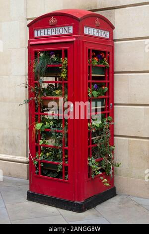 Badewanne, Großbritannien - 10 April, 2019. Red öffentlichen phonebox mit Pflanzen im Stadtzentrum von Badewanne gefüllt. Bath, England, UK, 10. April 2019 - Stockfoto