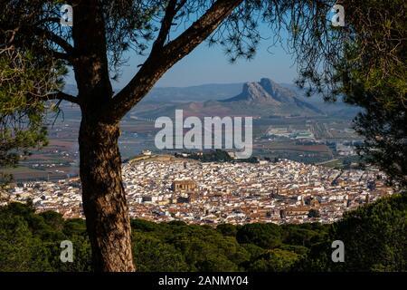 Panoramaaussicht, Antequera Stadt. Im Süden der Provinz Malaga, Andalusien. Spanien Europa - Stockfoto