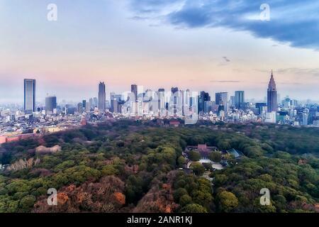 Shinto Schrein Meiji-Jingu im Zentrum von Tokyo in der Nähe des Shinjuku Business District bei Sonnenaufgang in erhöhten Luftaufnahme über Green Park und Garten in Richtung citys - Stockfoto