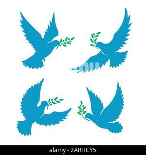 Fliegende Taube mit Olivenzweig - Stockfoto