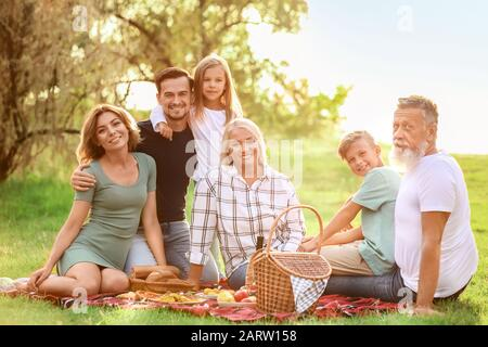 Große Familie mit Picknick im Park - Stockfoto