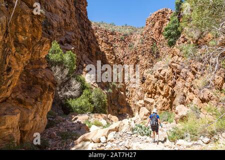 Eine junge Frau, die den Olivenpfad im Namib-Naukluft-Park wandert und durch einen Canyon mit erodierten großen Felsen geht, in Namibia, Afrika - Stockfoto
