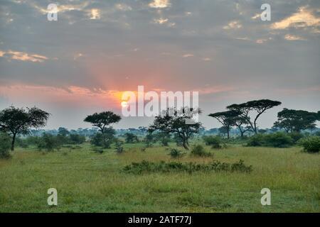 Landschaft mit Sonnenaufgang im Serengeti-Nationalpark, UNESCO-Weltkulturerbe, Tansania, Afrika - Stockfoto