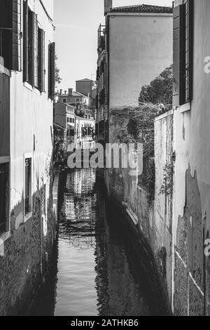 Die Kornen und Kanäle Venedigs. Der Canal Grande von der Accademia-Brücke. In der Geschichte. Italien - Stockfoto