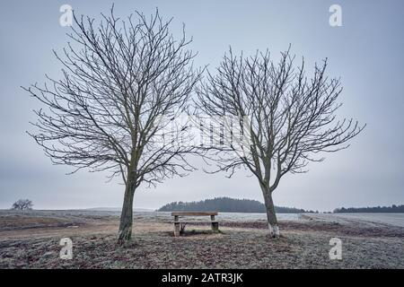 Zwei nackte Bäume und eine leere Bank in einer launigen und kalten Landschaft mit hohem Nebel und grauem Himmel. In Franken/Bayern, Deutschland, in Januar zu sehen - Stockfoto