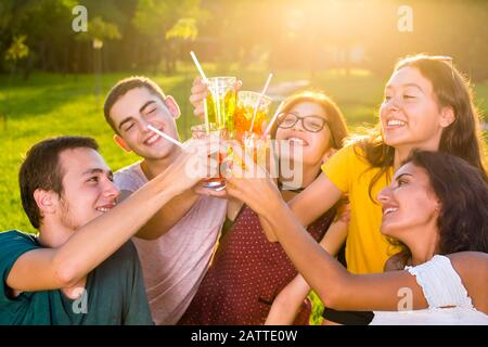 Junge fröhliche Freunde, die während der Picknickparty mit Cocktails im Park toben. Nahgruppenporträt aus hohem Winkel. - Stockfoto