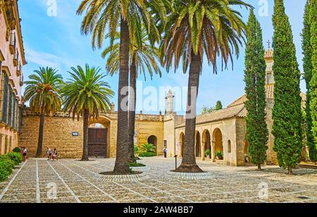 Jerez, SPANIEN - 20. SEPTEMBER 2019: Die hohen Palmen inmitten der Steinterrasse von Armas (Paradegelände) der Festung Alcazar, am 20. September in Jerez Stockfoto