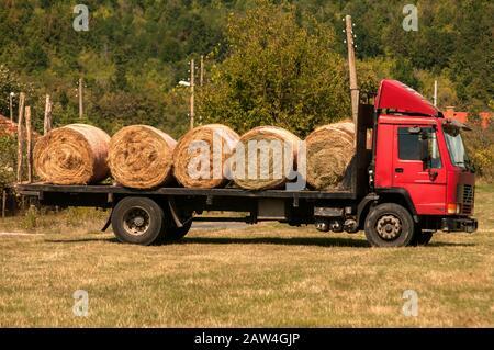 LKW beladen mit runden Heuballen auf der Wiese - Stockfoto
